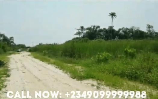 20210215 093410